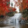 養老渓谷の紅葉2014ハイキングおすすめコースは?見ごろの時期は?